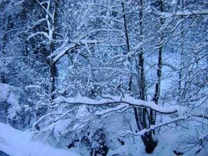 Новый год в горнолыжной Болгарии