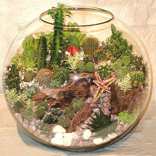 Цветы в аквариуме своими руками